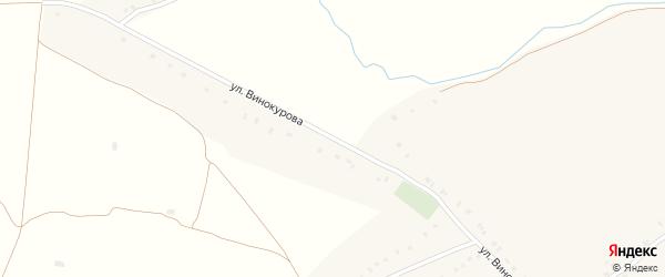 Улица Винокурова на карте села Борщово с номерами домов