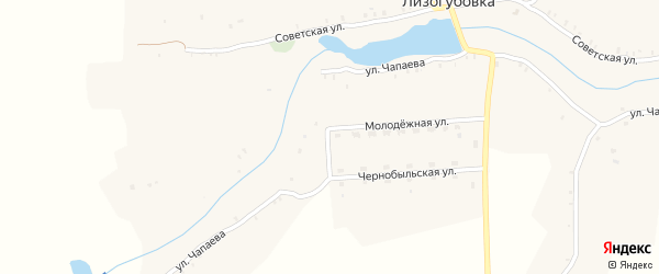 Советская улица на карте села Лизогубовки с номерами домов