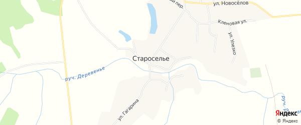 Карта села Староселья в Брянской области с улицами и номерами домов