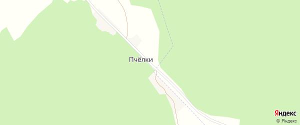 Лесная улица на карте хутора Пчелки с номерами домов