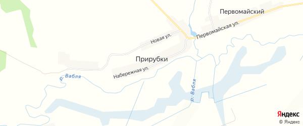 Карта деревни Прирубки в Брянской области с улицами и номерами домов
