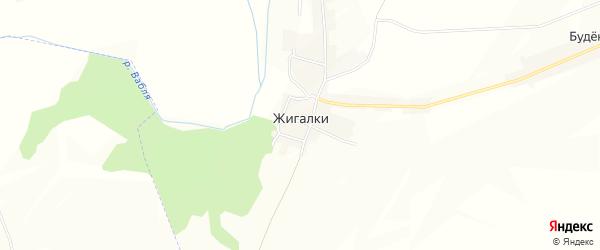 Карта деревни Жигалки в Брянской области с улицами и номерами домов