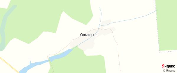 Карта деревни Ольшанки в Брянской области с улицами и номерами домов