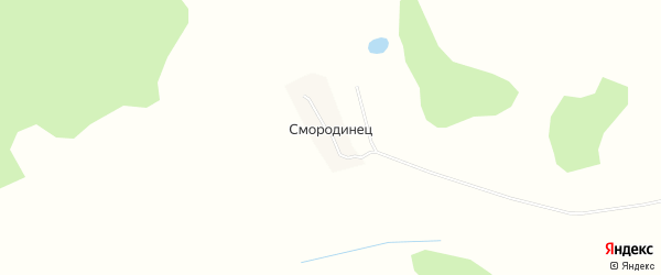 Карта деревни Смородинца в Брянской области с улицами и номерами домов