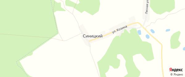 Карта Синицкого хутора в Брянской области с улицами и номерами домов