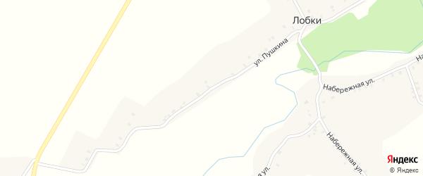 Улица Пушкина на карте села Лобки с номерами домов