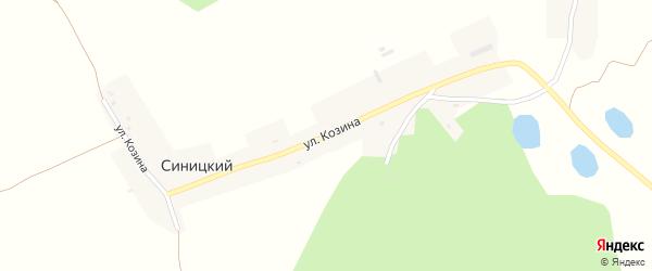 Улица Козина на карте Синицкого хутора с номерами домов