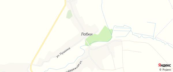 Карта села Лобки в Брянской области с улицами и номерами домов