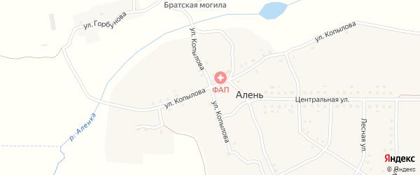 Улица Копылова на карте деревни Алня с номерами домов