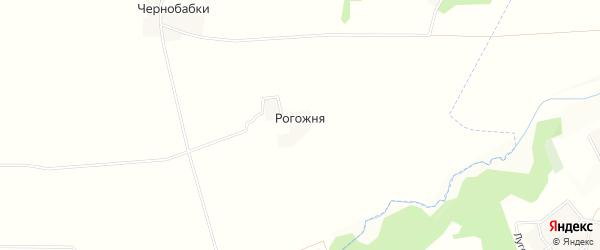 Карта поселка Рогожни в Брянской области с улицами и номерами домов