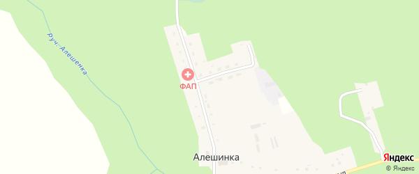 Центральная улица на карте деревни Алешинки с номерами домов