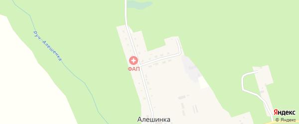 Цветочная улица на карте деревни Алешинки с номерами домов