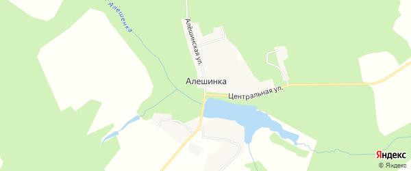 Карта деревни Алешинки в Брянской области с улицами и номерами домов