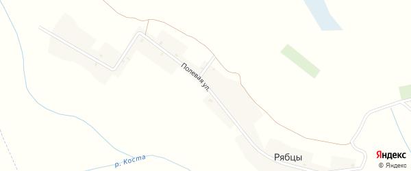 Полевая улица на карте деревни Рябцы с номерами домов