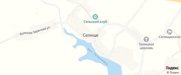 Малая Заречная улица на карте села Селища с номерами домов