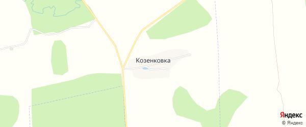 Карта деревни Козенковки в Брянской области с улицами и номерами домов