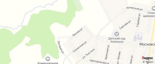Лесная улица на карте Московского поселка с номерами домов