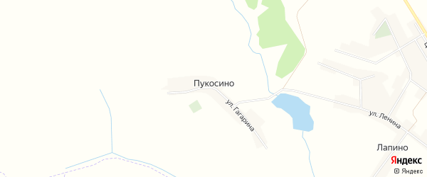 Карта деревни Пукосино в Брянской области с улицами и номерами домов