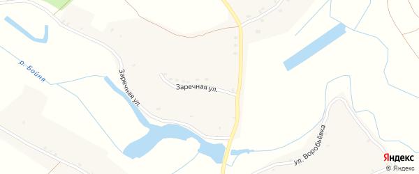 Заречная улица на карте села Савостьяны с номерами домов