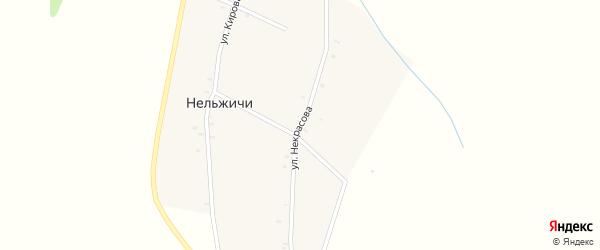 Улица Некрасова на карте деревни Нельжичи с номерами домов