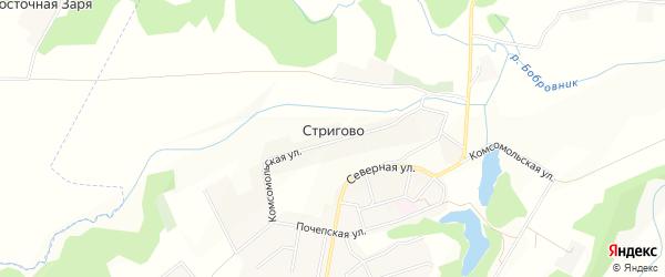 Карта села Стригово в Брянской области с улицами и номерами домов