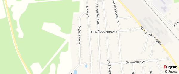 Новая улица на карте поселка Клетня с номерами домов