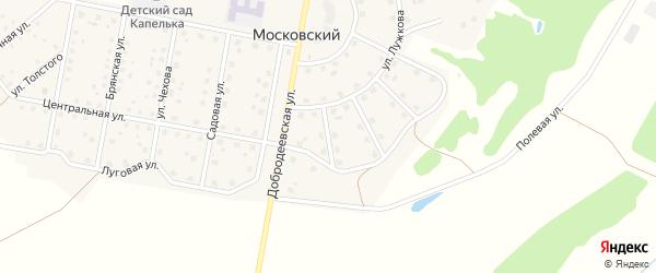 Переулок Надежды на карте Московского поселка с номерами домов