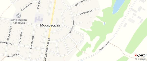 Переулок Березовая Роща на карте Московского поселка с номерами домов