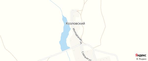 Молодежная улица на карте Козловского поселка с номерами домов