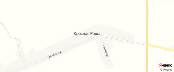 Луговая улица на карте поселка Красной Рощи с номерами домов