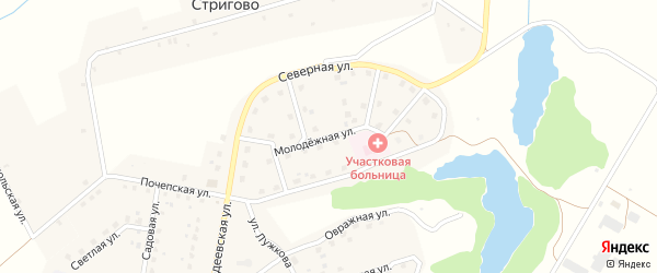 Молодежная улица на карте Московского поселка с номерами домов