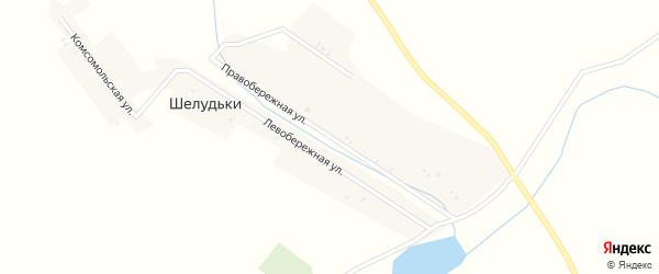 Правобережная улица на карте деревни Шелудьки с номерами домов