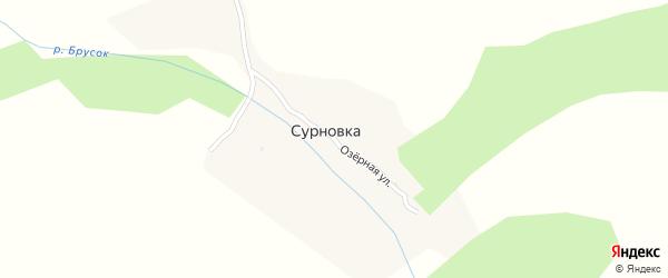Озёрная улица на карте деревни Сурновки с номерами домов