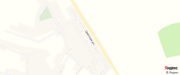 Цветная улица на карте села Лапино с номерами домов