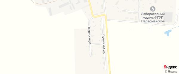 Полянская улица на карте Первомайского поселка с номерами домов