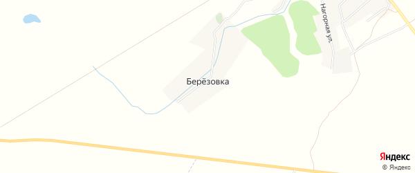 Карта деревни Березовки в Брянской области с улицами и номерами домов