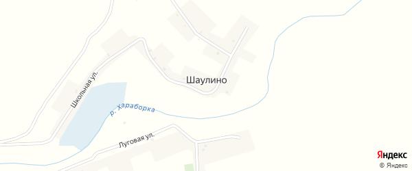 Луговая улица на карте села Шаулино с номерами домов