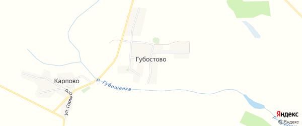 Карта села Губостово в Брянской области с улицами и номерами домов