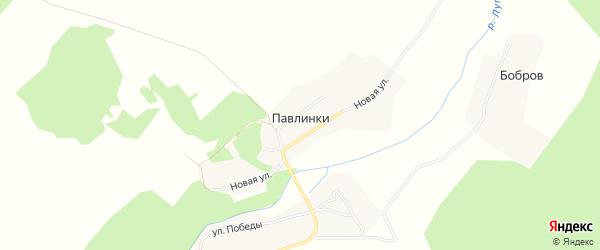 Карта деревни Павлинки в Брянской области с улицами и номерами домов