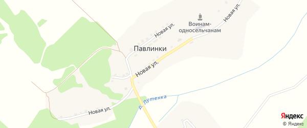 Новая улица на карте деревни Павлинки с номерами домов