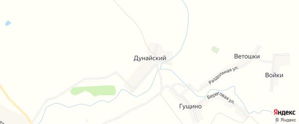 Карта Дунайского поселка в Брянской области с улицами и номерами домов
