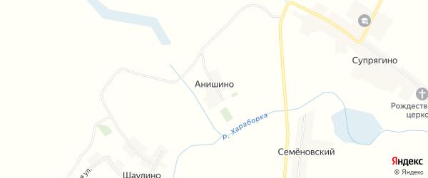 Карта деревни Анишино в Брянской области с улицами и номерами домов