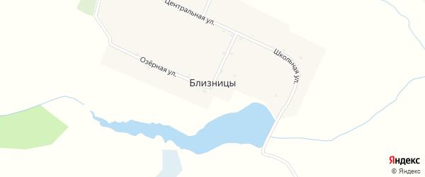 Заречная улица на карте деревни Близницы с номерами домов