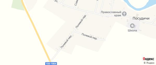 Полевой переулок на карте села Посудичи с номерами домов