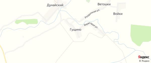 Карта деревни Гущино в Брянской области с улицами и номерами домов