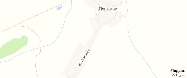 Улица Калинина на карте деревни Пушкари с номерами домов