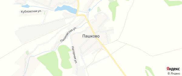 Карта деревни Пашково в Брянской области с улицами и номерами домов