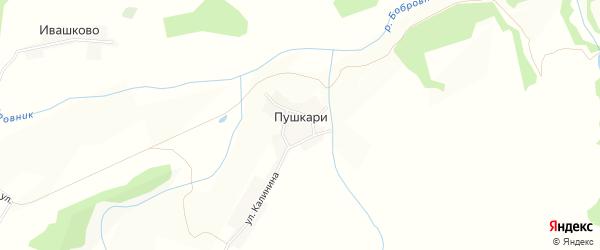 Карта деревни Пушкари в Брянской области с улицами и номерами домов