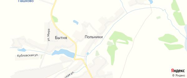Карта деревни Польников в Брянской области с улицами и номерами домов