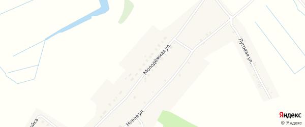 Молодежная улица на карте деревни Долботово с номерами домов